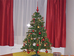 Beitragsbild_Weihnachtsfeier_2007